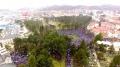 Око 20.000 људи на сабору за одбрану српске цркве у Никшићу